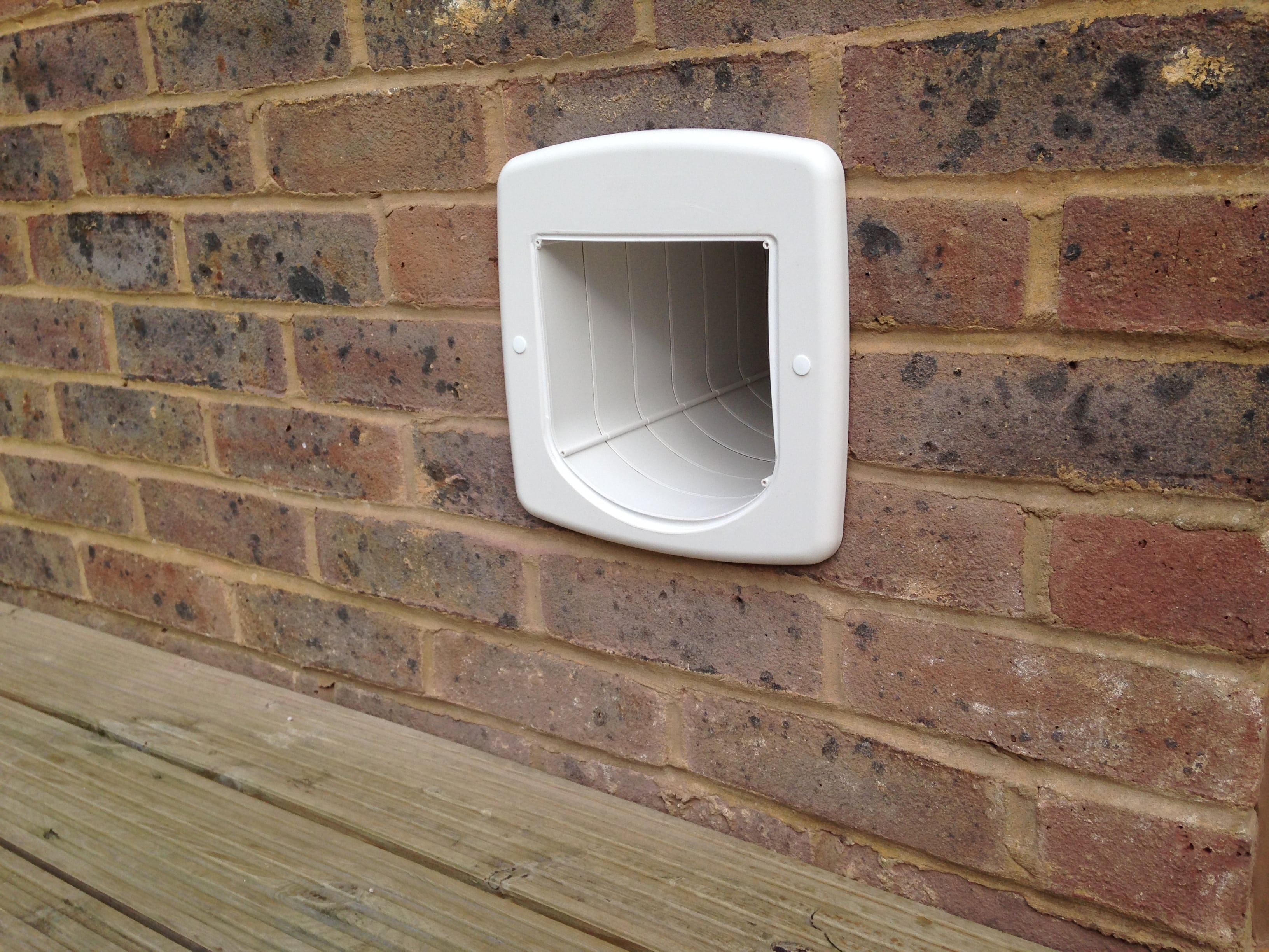 How To Let A Cat Out Without A Cat Flap